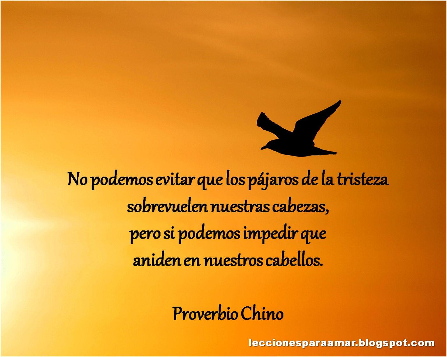 Proverbio Chino Proverbios Chinos Amor Proverbios Chinos