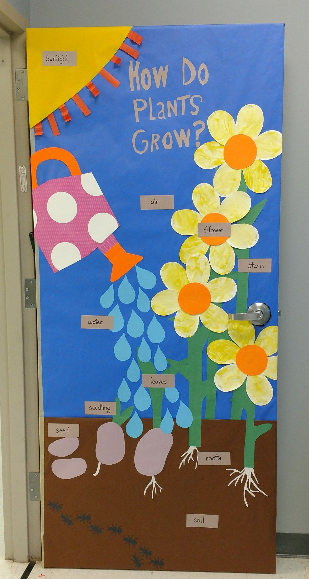 How Do Plants Grow Preschool Door Spring