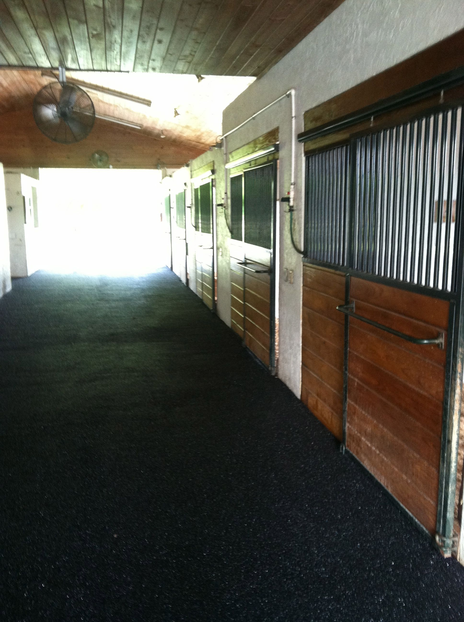 Equine Rubber Surface Aisle Way In Wellington Fl Www Splashscapes Net Fiberglass Swimming Pools Swimming Pools Outdoor Living