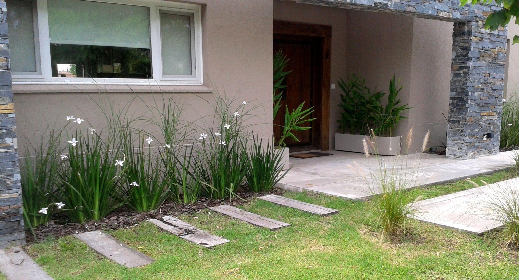 Dietes penisetum miscanthus ca a de ambar mbf for Casa moderna jardines