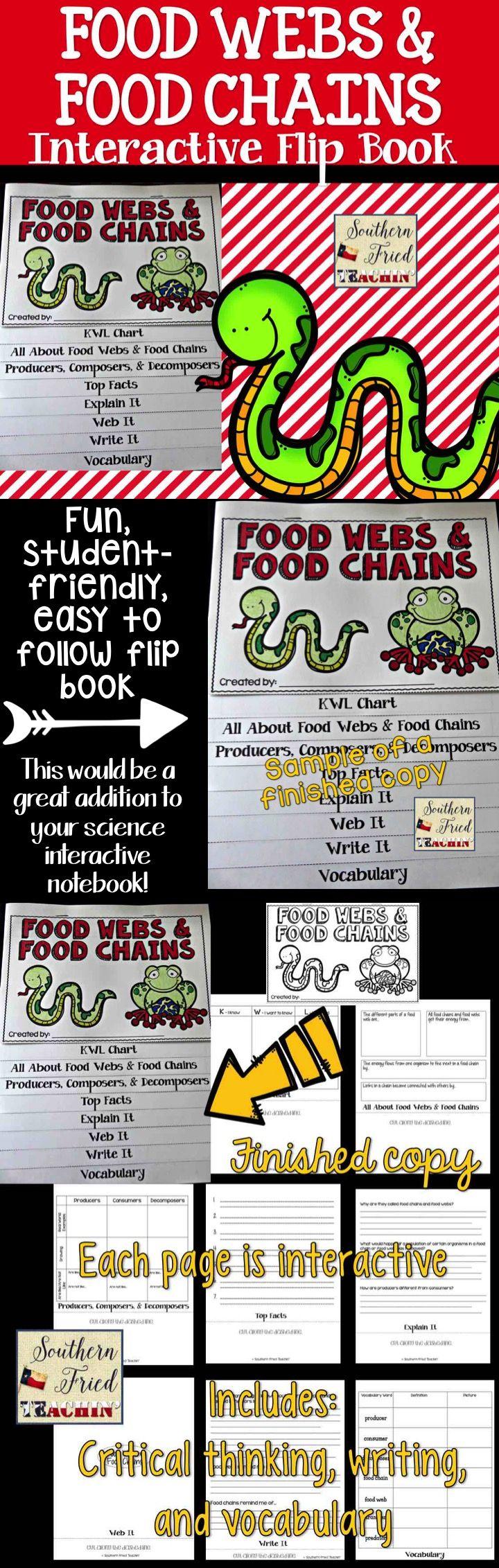 Food Webs & Food Chains Flip book, Interactive book