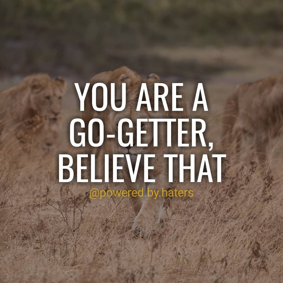 Definition From Cambridge Dictionary: A Go Getter Is Someone Who Is Very  Energetic, Determined To Be Successful, And Able To Deal With New Or  Difficult ...