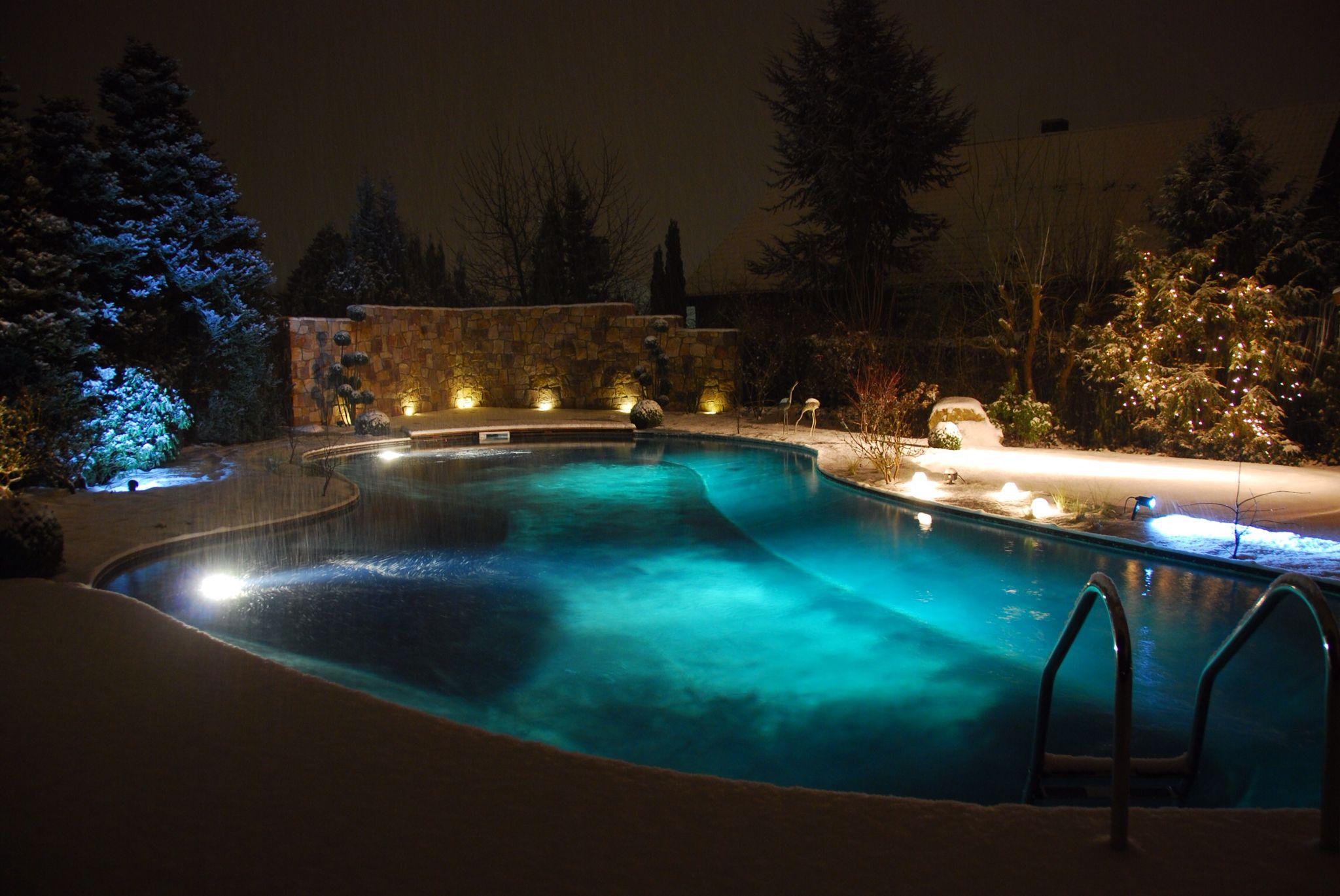schwimmteich freie form mit salzelektrolyse salzwasser. Black Bedroom Furniture Sets. Home Design Ideas