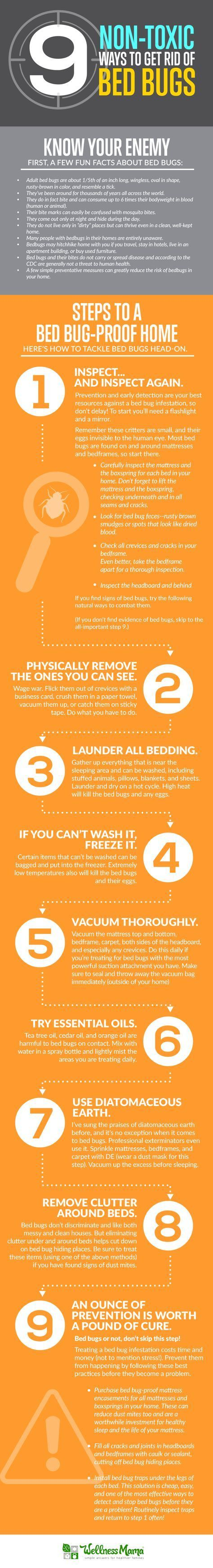 Pin on marys how to get rid of pests in and outside