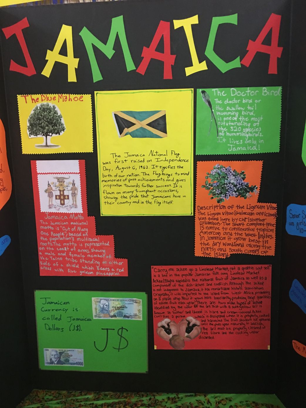 Jamaican Rice Amp Trifold Decorations For Girl Scouts