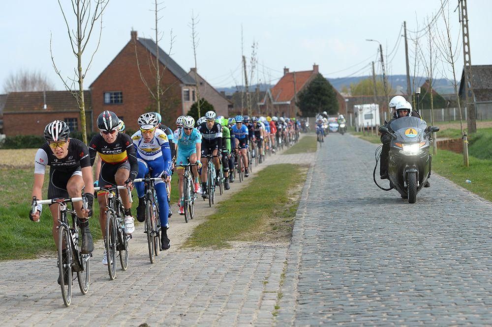 Gallery: 2014 Dwars door Vlaanderen - The peloton took respite from the cobbles wherever possible during the 201-kilometer race to Waregem, Belgium. Photo: Tim De Waele |