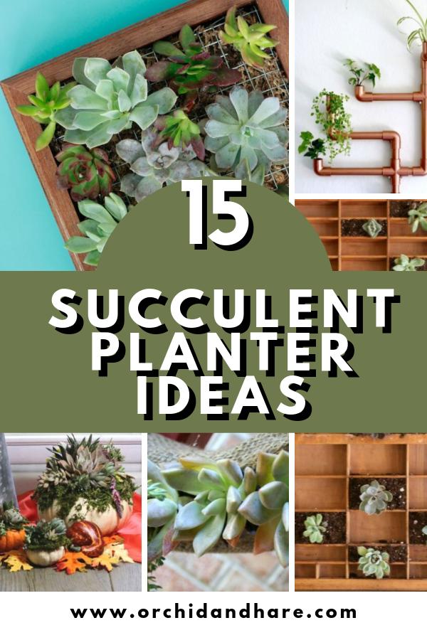 15 Unique Diy Succulent Planter Ideas For 2020 Succulent Planter