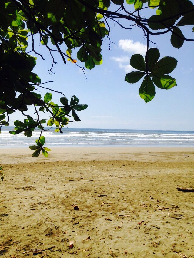 Parque Marino Ballena/Playa Colonia  Costa Rica Paradise