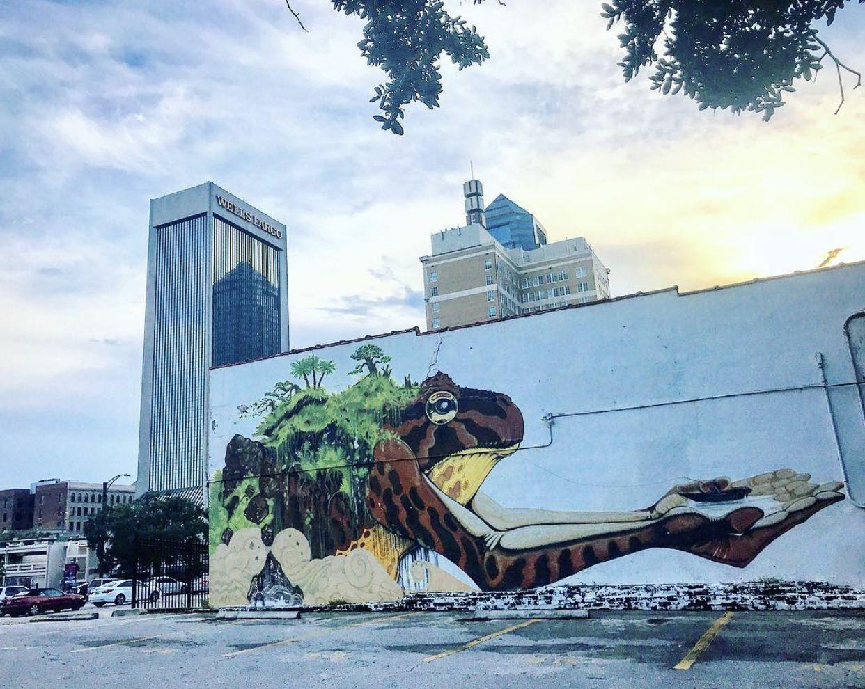 Guide To Jacksonville S Best Murals Vol 1 In 2020 Jacksonville Photo Mural