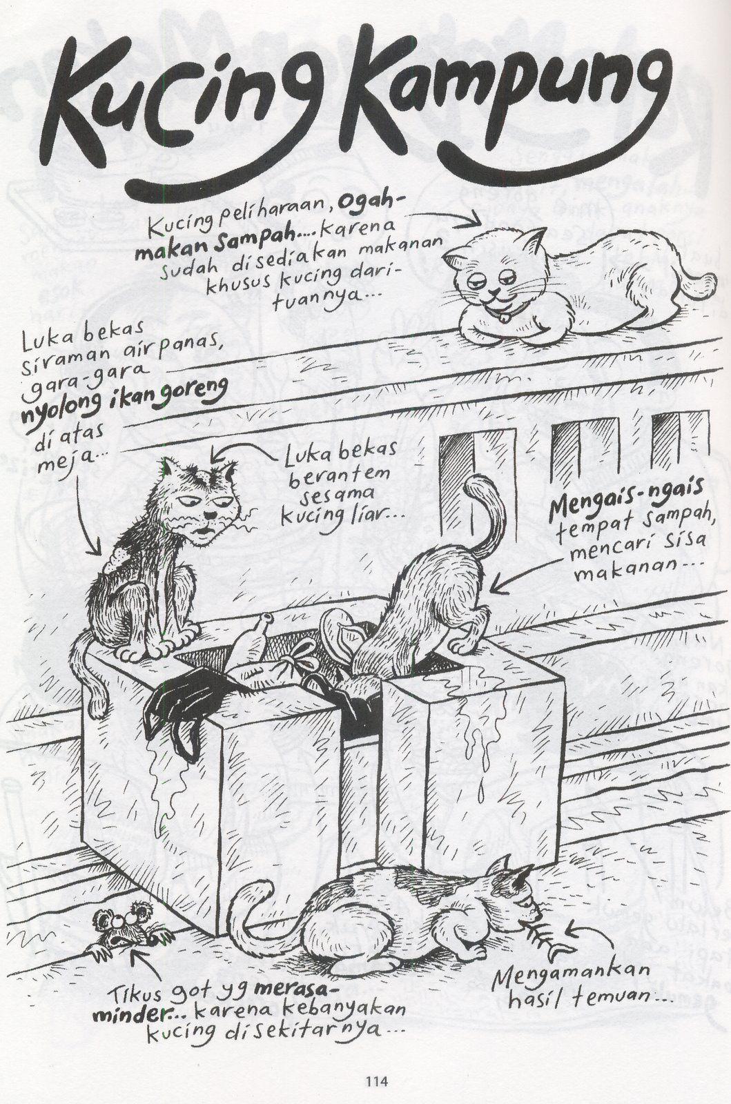 Kucing Kampung Benny And Mice Humor Lucu Lucu Gambar Lucu