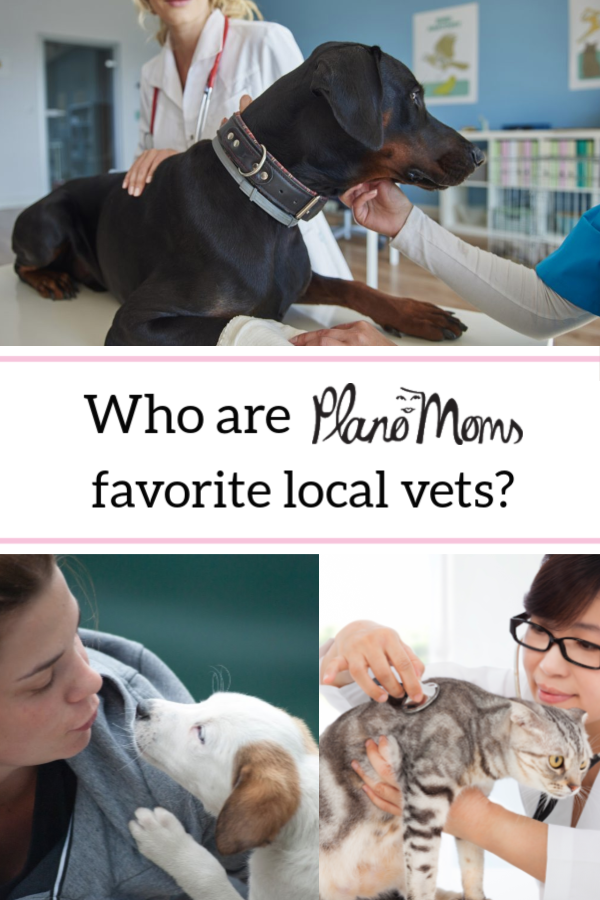 Who Are Plano Moms Favorite Local Vets Pet Clinic Pet Boarding Pet Day