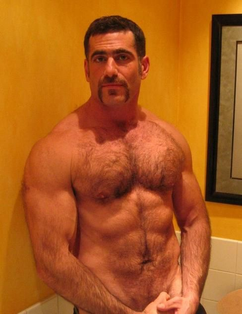 hairy bear daddy Gay