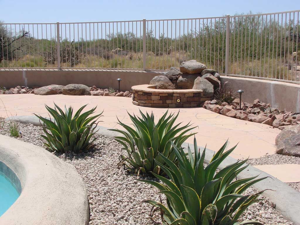 Desert backyard landscape theme swimming pool side photo for Garden design plants