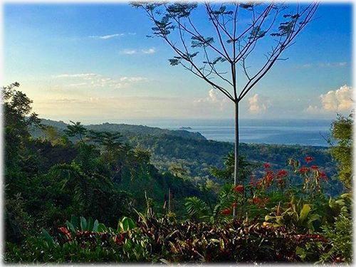 uvita real estate, homes, ocean views, beach, south pacific, contemporary, organic, homes for sale