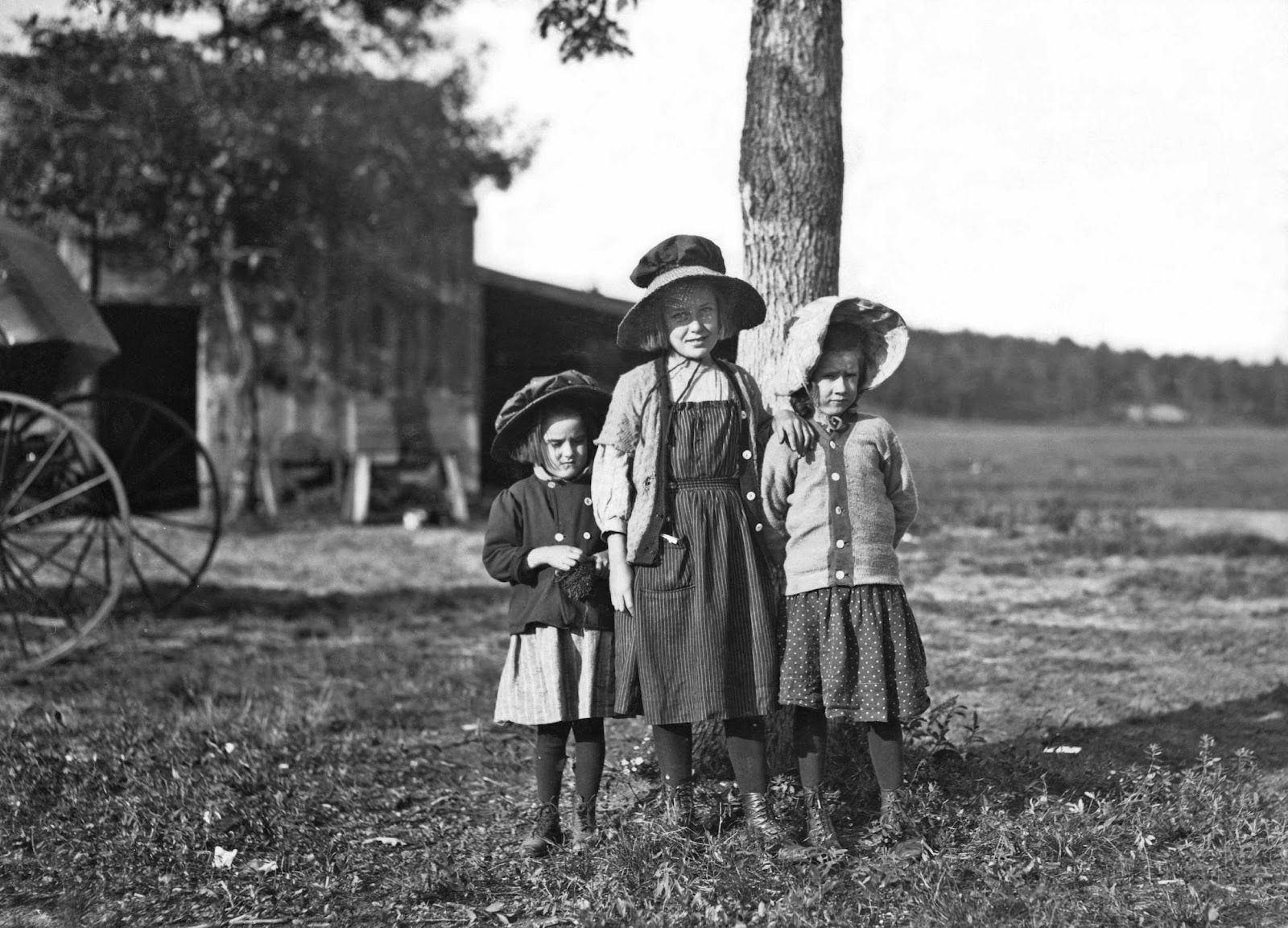 Migrant child workers Cranberry Pickers 1911
