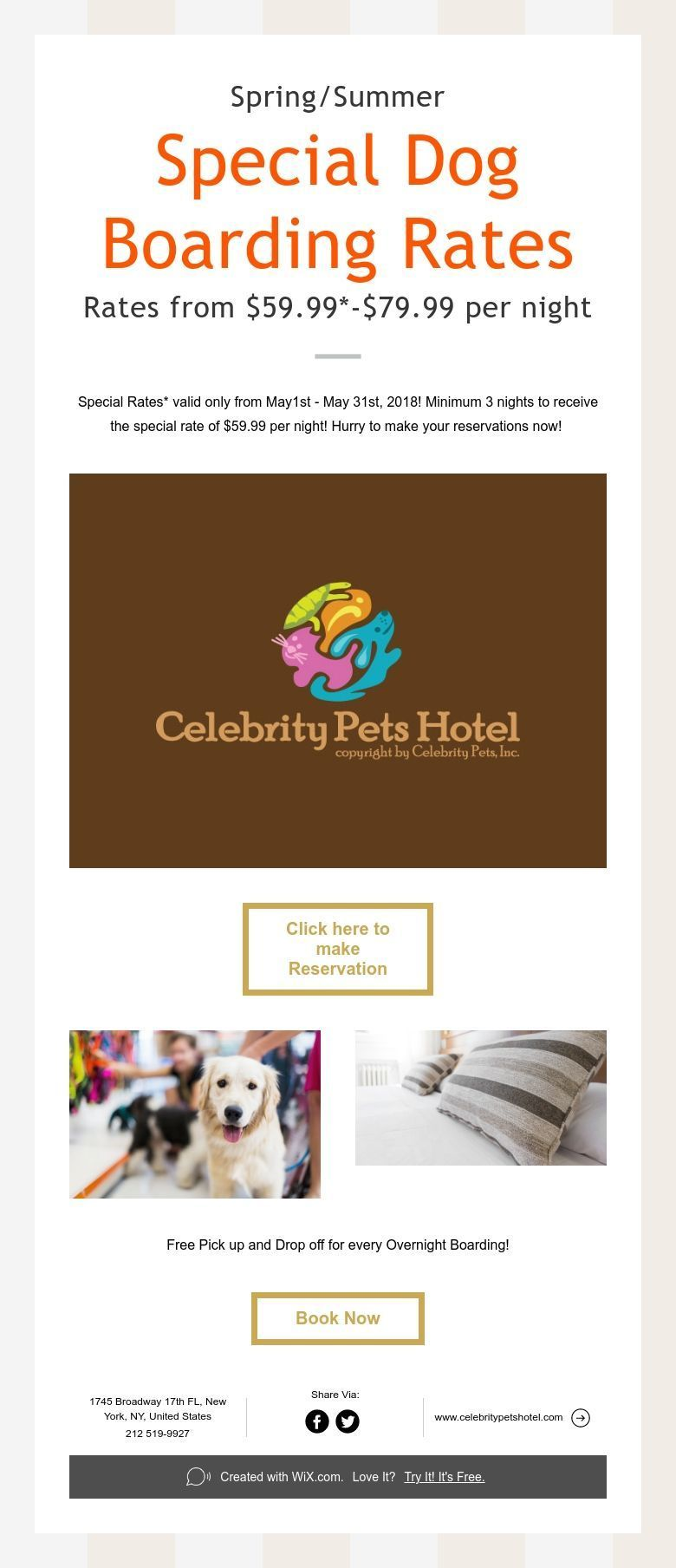 Spring Summer Special Dog Boarding Rates Rates From 59 99 79 99