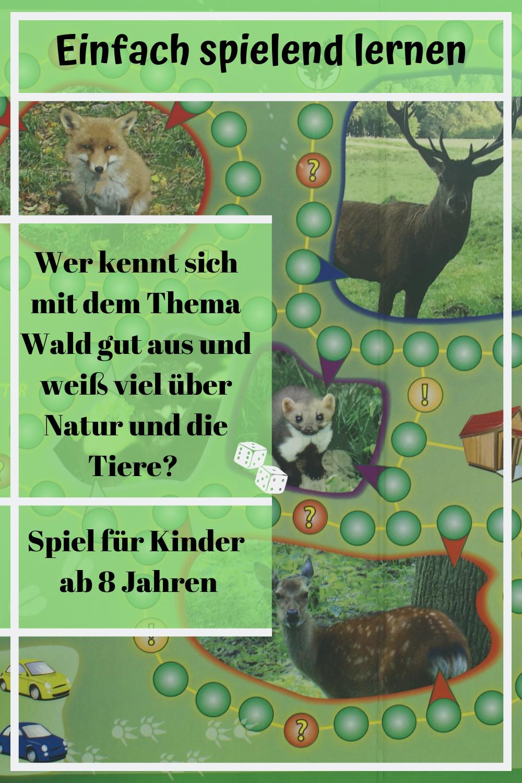 Spiele Zum Thema Tiere