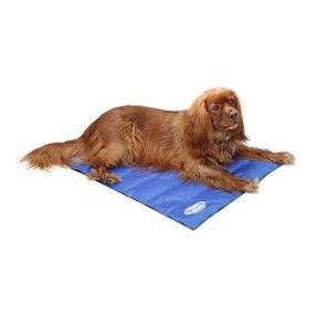 Kjolematte Self Cooling M Blue Scruffs Hundeutstyr Hund Hundeseng