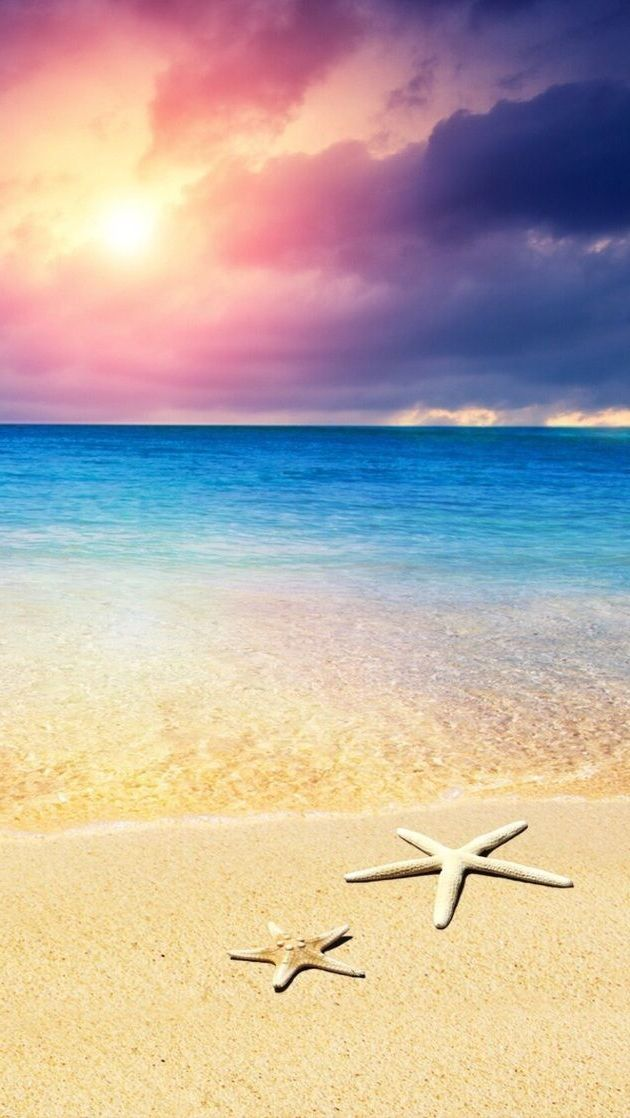 Beach Starfish Android Wallpaper