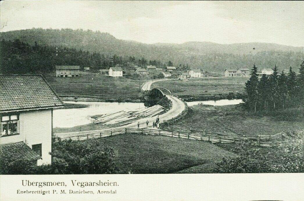Aust-Agder fylke Vegårshei kommune UBERGSMOEN. Vegaarsheien. Med broen og folk i krysset  Utg P. M. Danielsen Brukt 1904.