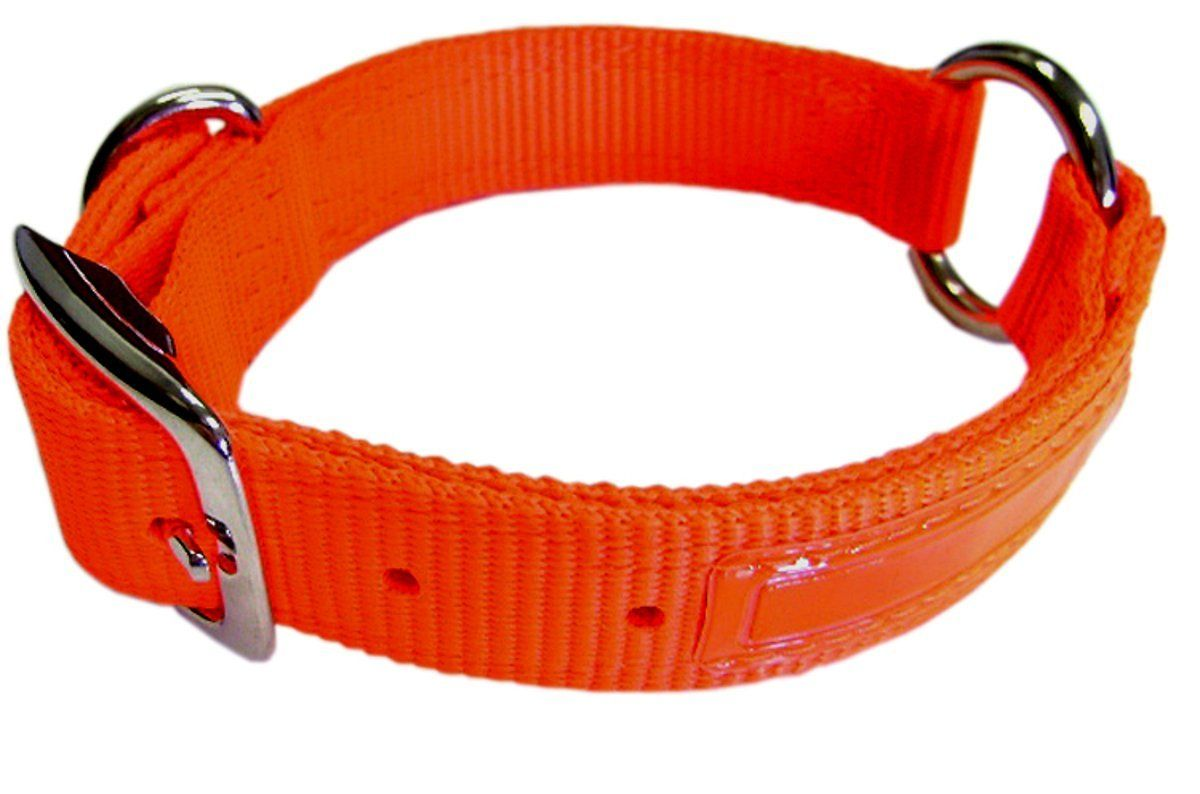 Hamilton 1Inch Double Thick Safe Rite Dog Collar with