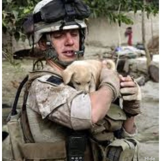 Troop in Afghanistan with a puppy