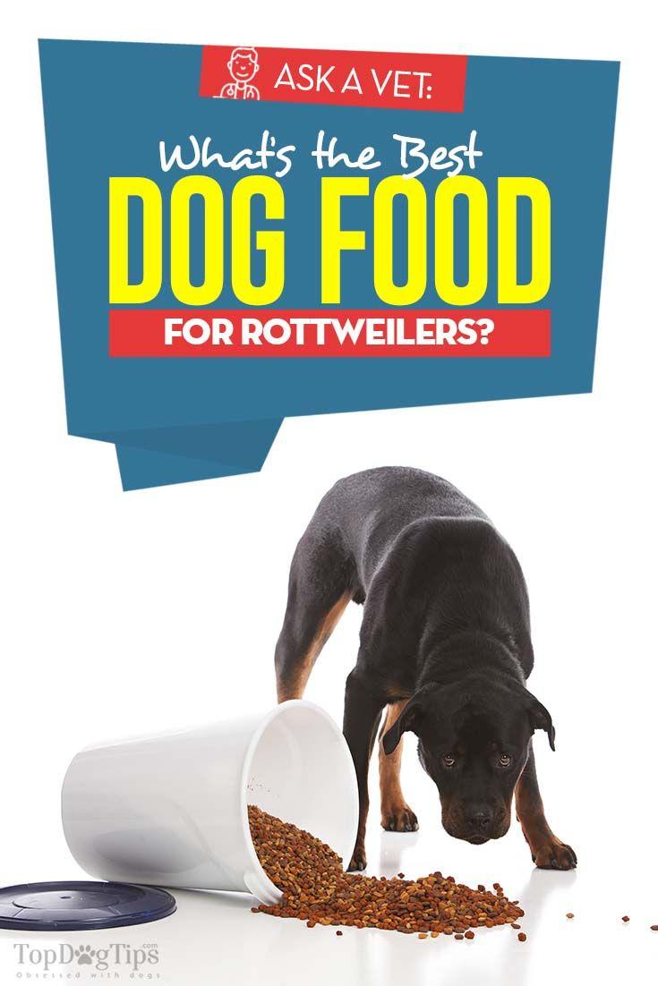 Best dog food for rottweilers 5 vet brands