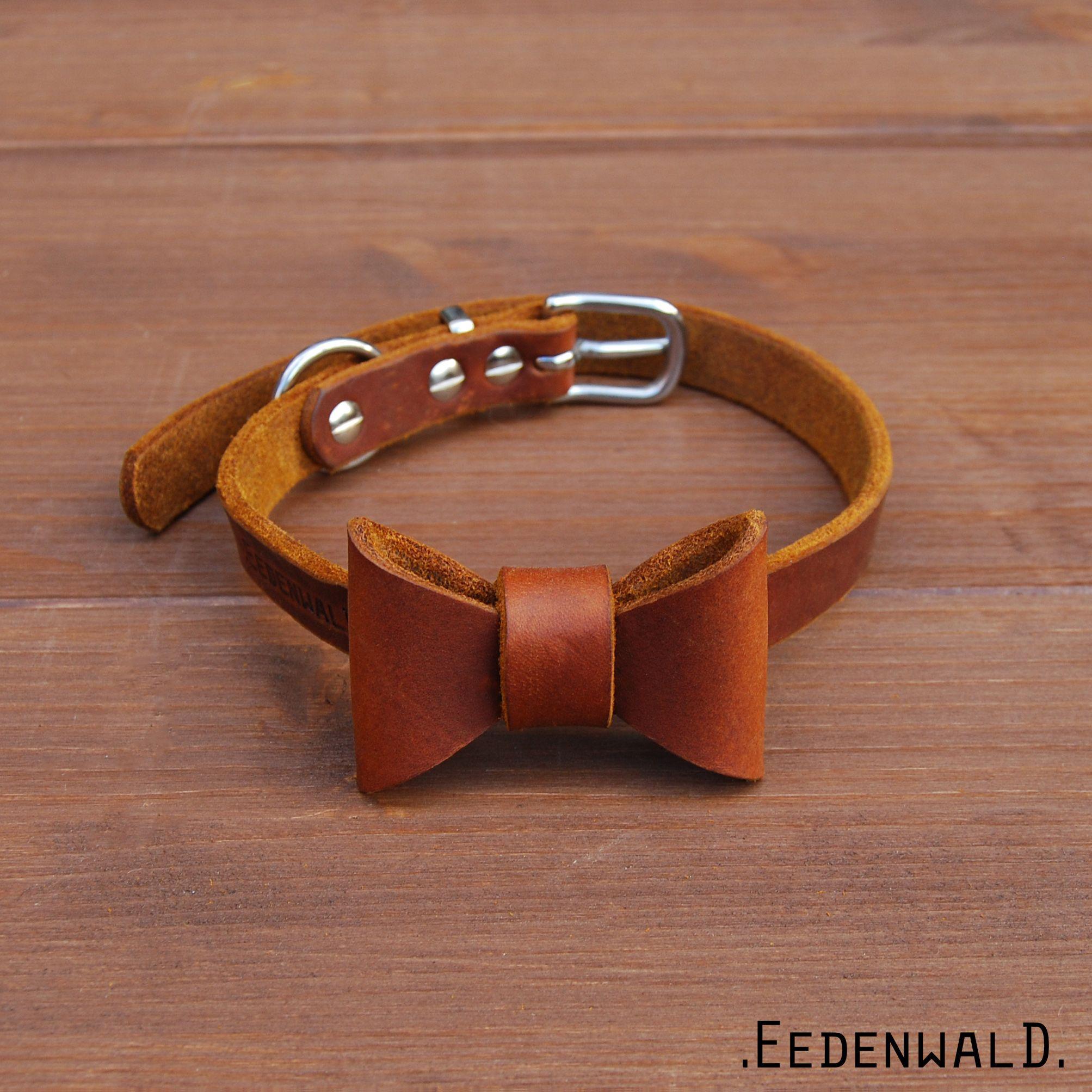Lederhalsband Mit Fliege Handmade Leather Dog Collar Leather Dog Collars Diy Leather Dog Collar