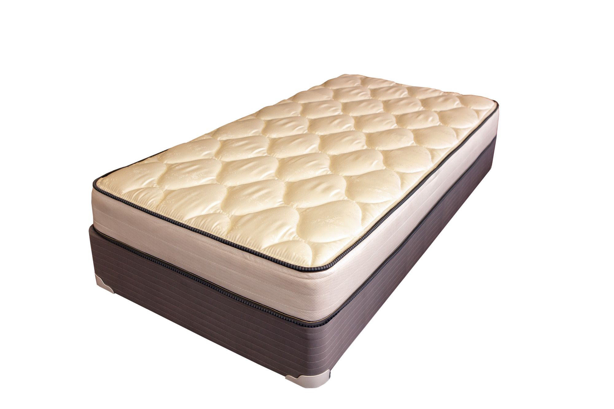 spine support 8 alina foam mattress wayfair king koil mattress