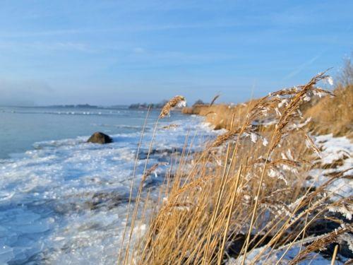 Winterliche Eislandschaft auf der Insel Rügen - Urlaub an der Ostsee - Ihre private Unterkunft an der Ostseeküste