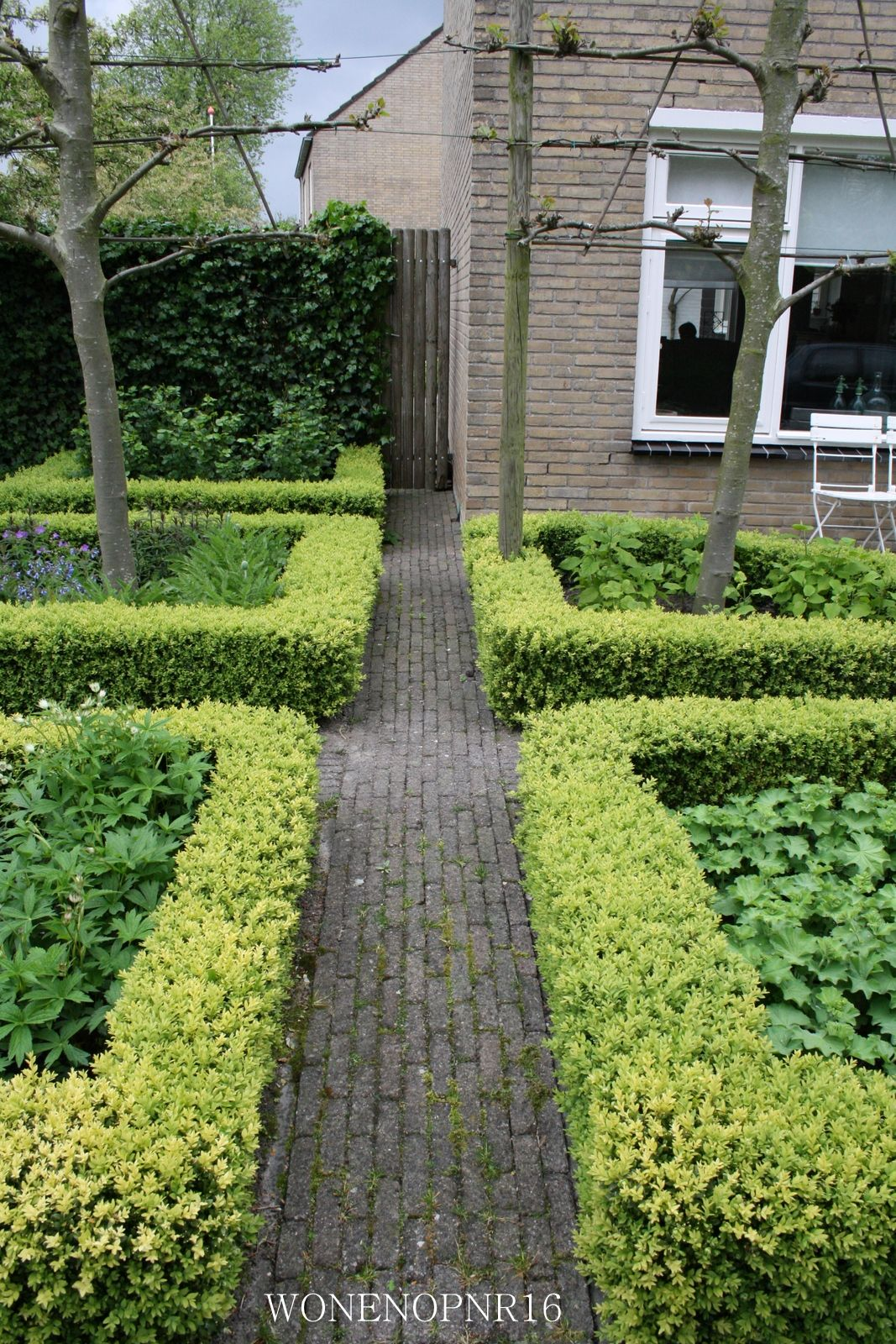 1000+ images about Tuin on Pinterest