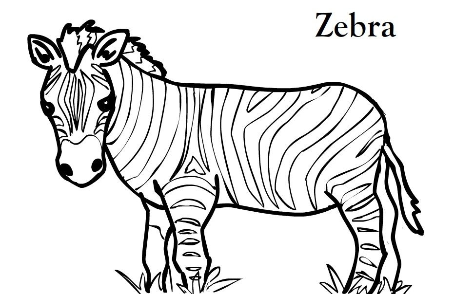 Pin By Wendy V On Roar Vbs 2019 Zebra Coloring Pages Animal