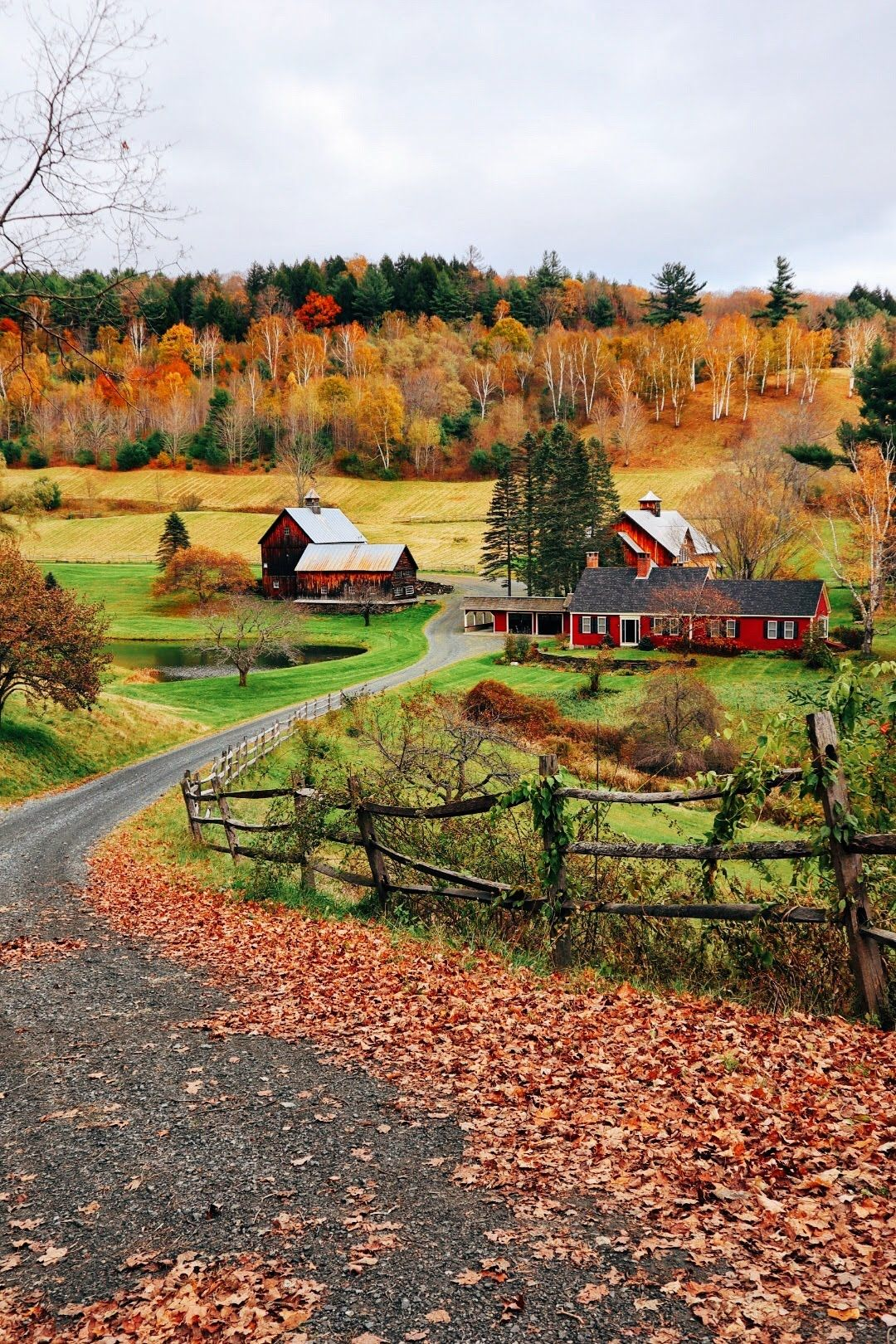 25 fun fall things to do in new england