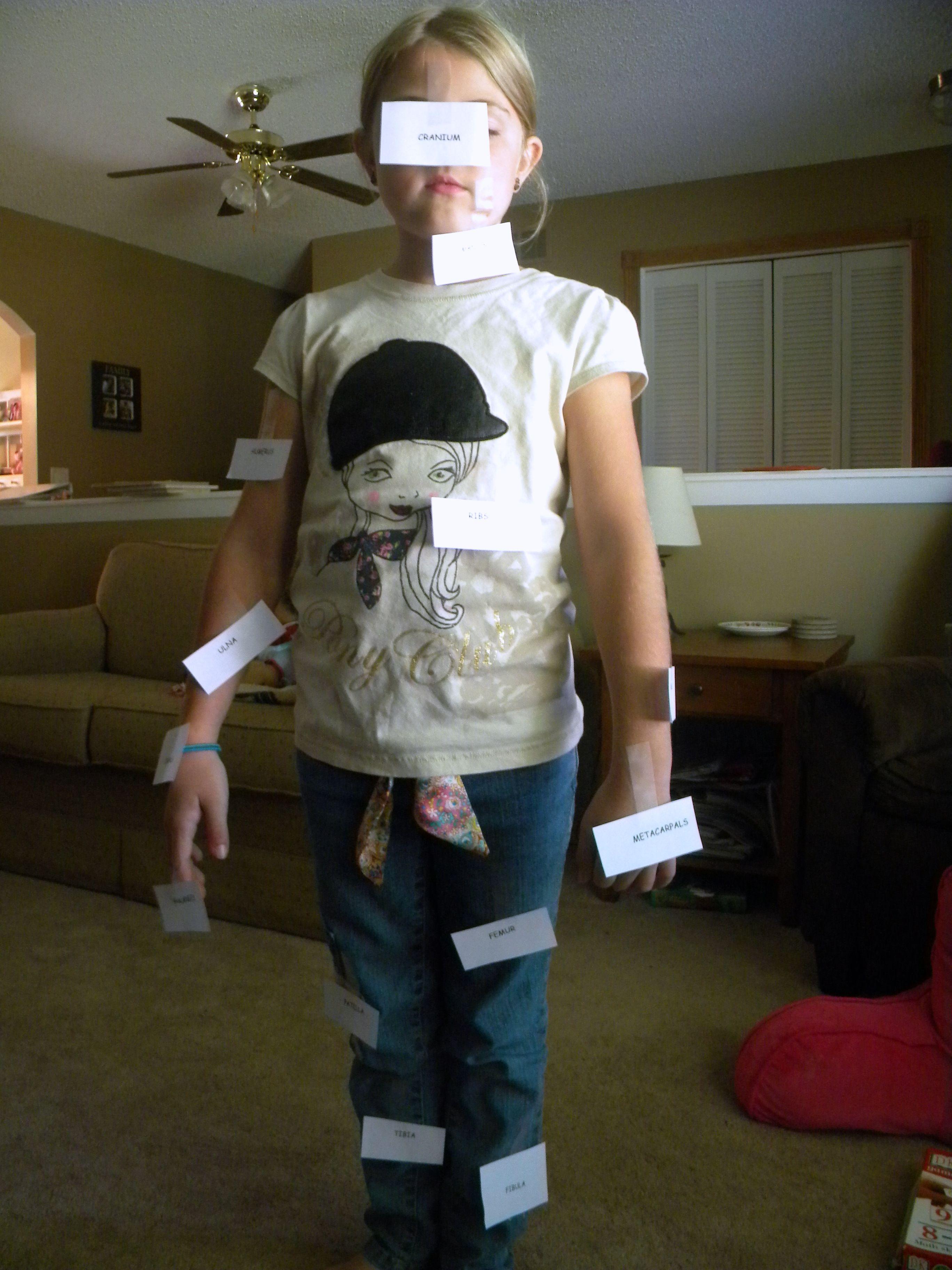 Teaching Children About Bones Fun Ideas For A Skeleton