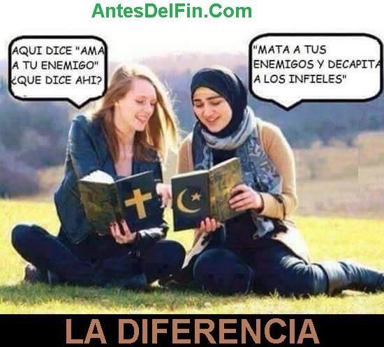 AntesDelFin.com 2015®