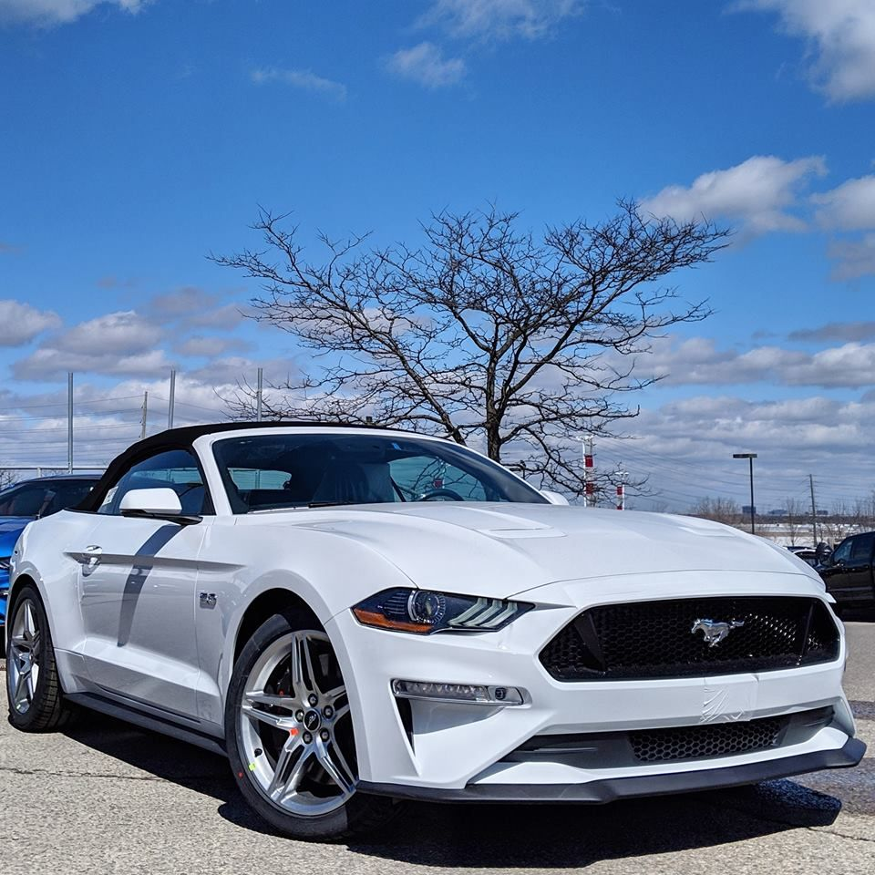 2019 Ford Mustang Gt Convertible In 2020 Ford Mustang Gt
