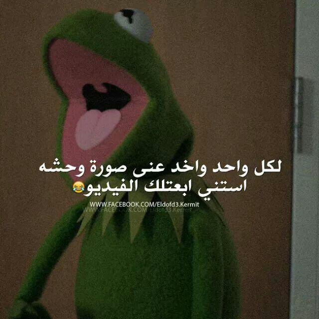 هههه وعلق الصورة في صالون داركم Funny Reaction Pictures Funny Arabic Quotes Arabic Funny