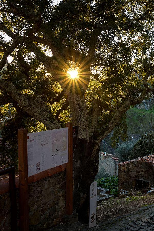 Água Formosa aldeia de xisto Vila de Rei, um local onde a calma contrasta com o som da água a correr na ribeira.  Viagem, Gastronomia e Cultura em Portugal | Tapa ao Sal
