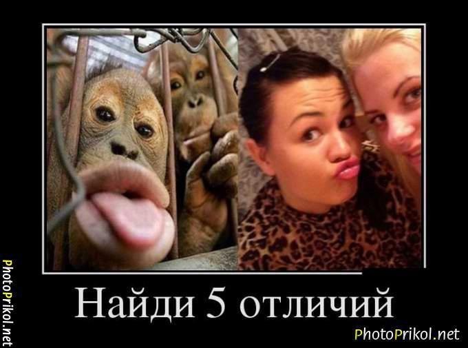 смешные фото и смешные картинки