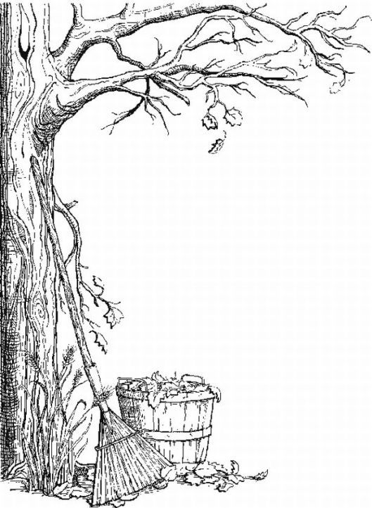 Autumn Tree Coloring Pages Craft Things Pinterest Colores