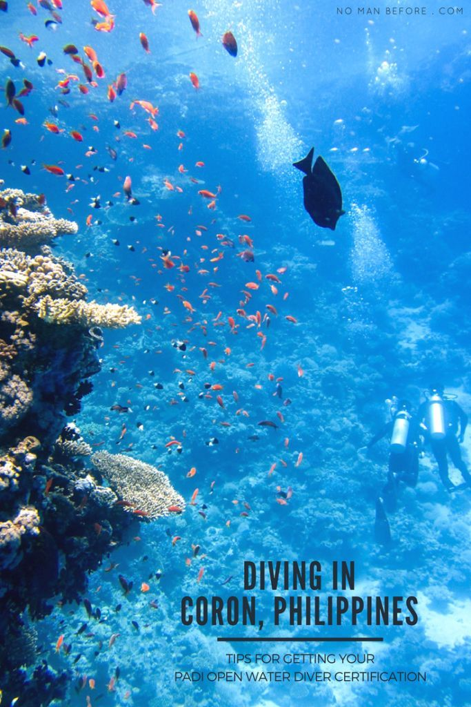 Diving in Coron, Philippines (Plus tips for getting your PADI Open ...