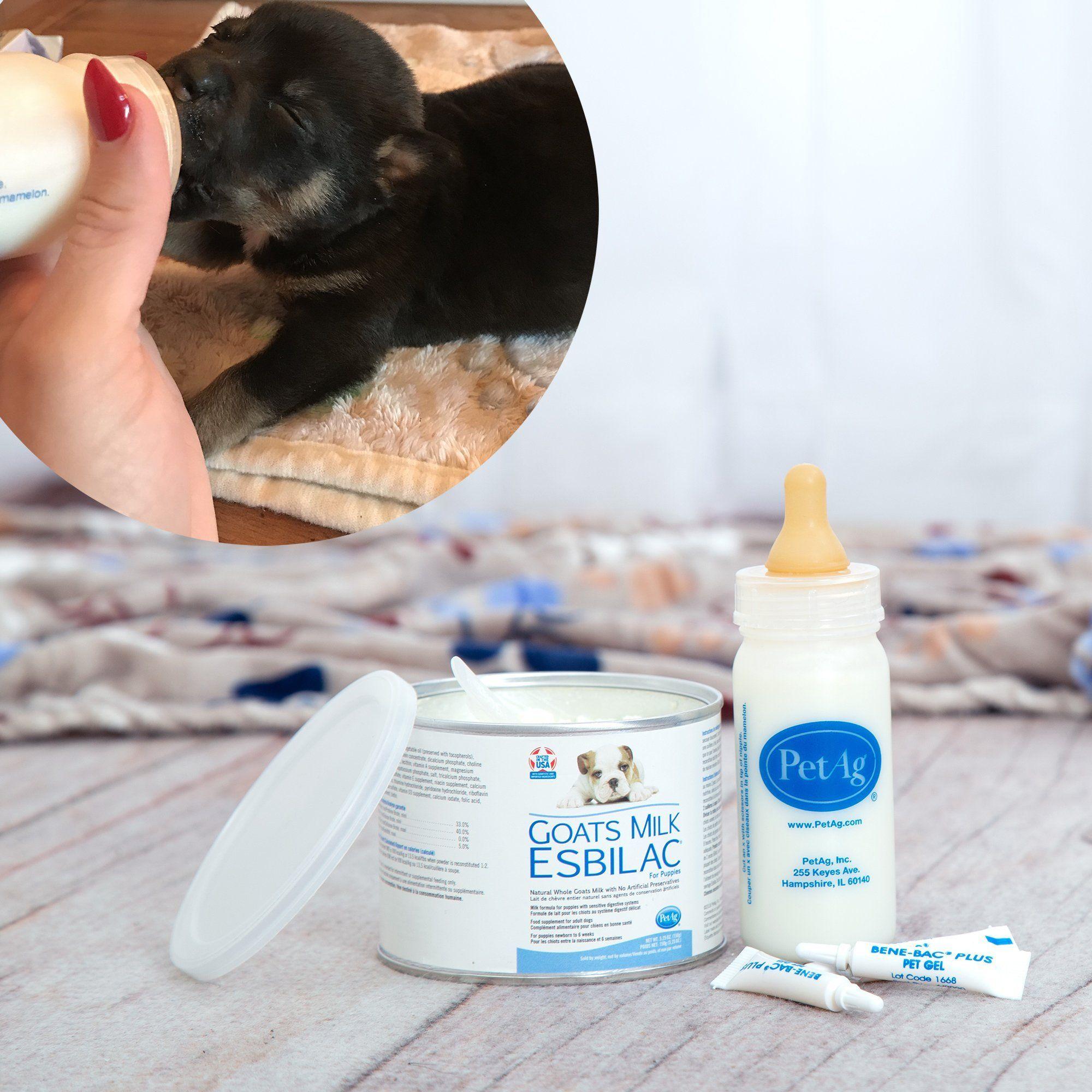 Emergency Care LifeSaving Formula Kits For Fur Babies