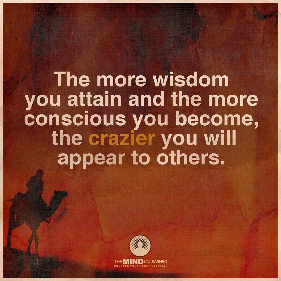Conscious Quotes The More Wisdom You Attain And The More Conscious You Become The