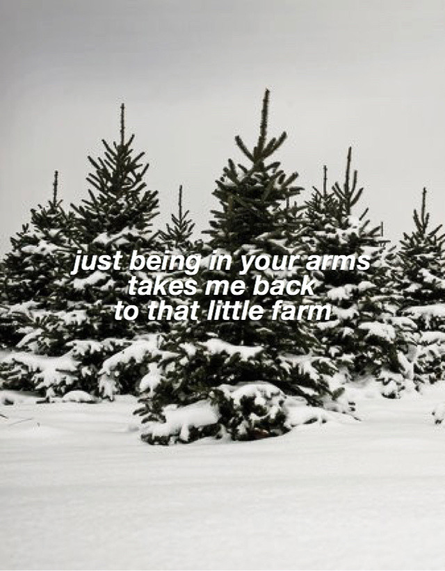 Christmas Tree Farm Lyrics Tumblr Taylor Swift Lyrics Taylor Swift Songs Taylor Lyrics