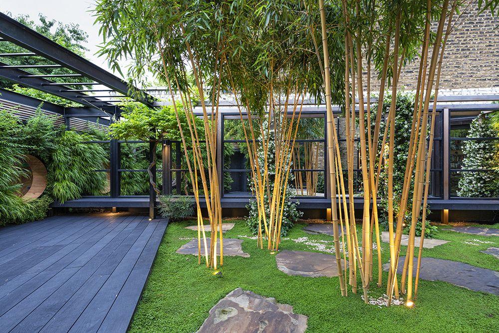 Garden design trends for 2020 in 2020 | Garden design ...