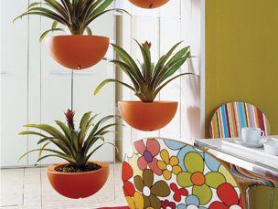 Comex decora con plantas tu sala y comedor ideas para for Casas decoradas con plantas naturales