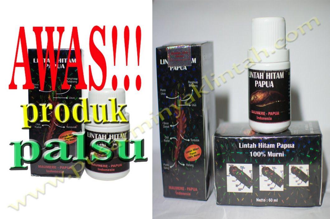 agen grosir minyak lintah papua asli toko online pak haji shop