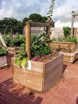 Astounding How To Build A Concrete Raised Bed Garden For The Disabled Caraccident5 Cool Chair Designs And Ideas Caraccident5Info