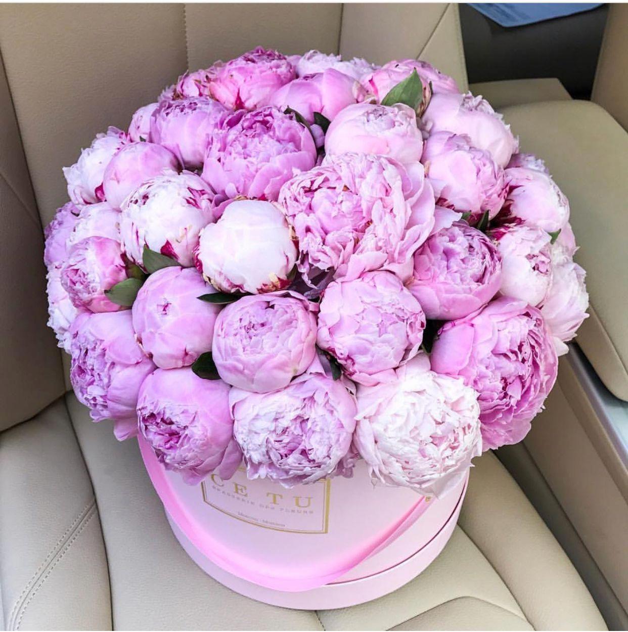 Peonies Asda Peonies Beautiful Flowers Beautiful Flower Arrangements Luxury Flowers