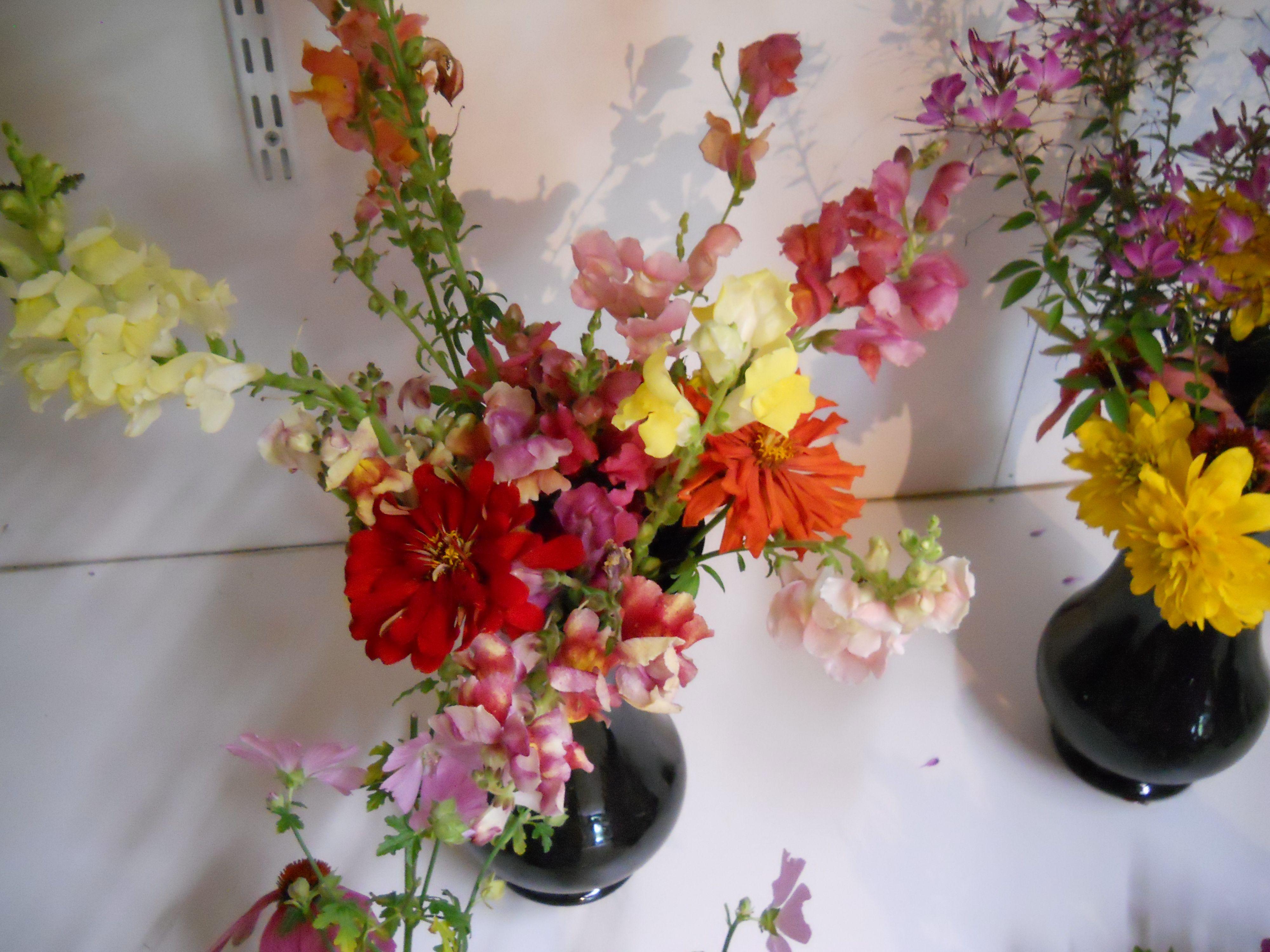 Very colorful flower arrangement. | Colorful Flowers | Pinterest ...